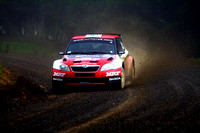 2013 International Rally of Whangarei